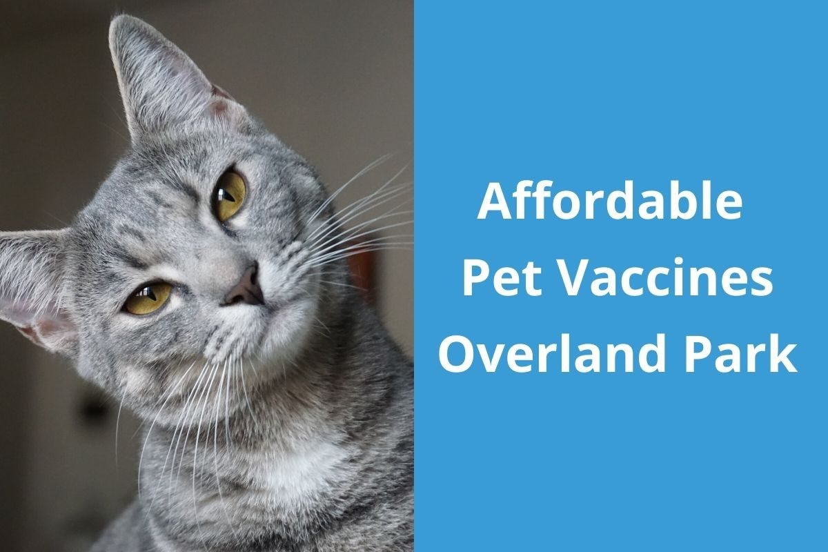 Affordable-Pet-Vaccines-Overland-Park